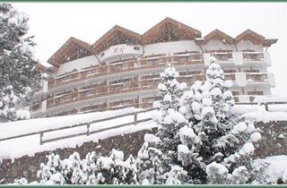 Italy, Val di Fiemme - Obereggen, Cavalese, Hotel La Roccia