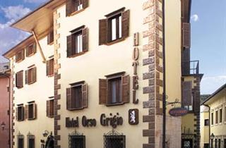 Italy, Val di Fiemme - Obereggen, Cavalese, Hotel Orso Grigio