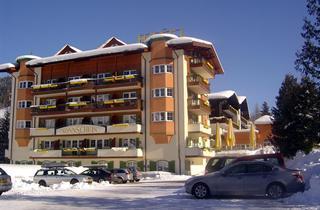 Austria, Ski Juwel Alpbachtal Wildschoenau, Niederau Wildschönau, Hotel Sonnschein