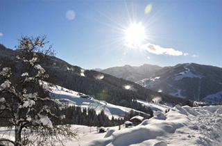 Austria, Salzburger Sportwelt, Wagrain, Almhaus Zwislegg