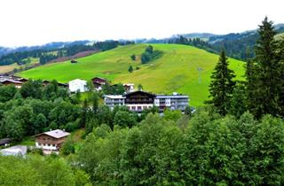 Austria, Saalbach Hinterglemm Leogang Fieberbrunn, Hinterglemm, Hotel Residenz Hochalm