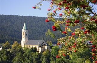Germany, Erzgebirge, Oberwiesenthal, Ferienpark Oberwiesenthal