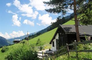 Austria, Rauristal, Bucheben, Chalet Alte Mühle