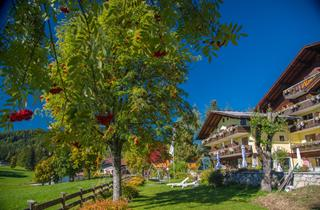Austria, Schladming - Dachstein (Ski Amade), Ramsau am Dachstein, Hotel Almfrieden