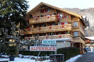 Switzerland, Jungfrau, Wilderswil, Alpenblick & Chalets