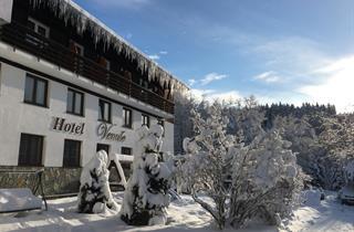 Czech Republic, Spindleruv Mlyn, Špindlerův Mlýn, Hotel Venuse